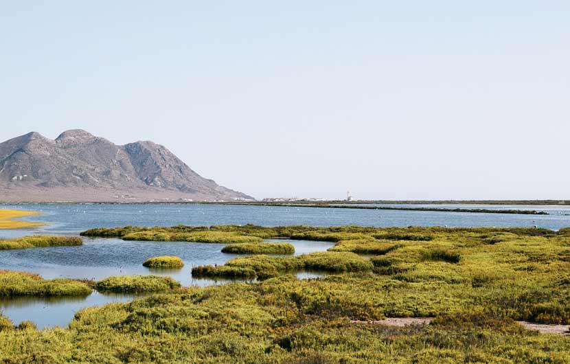Cabo De Gata Almeria