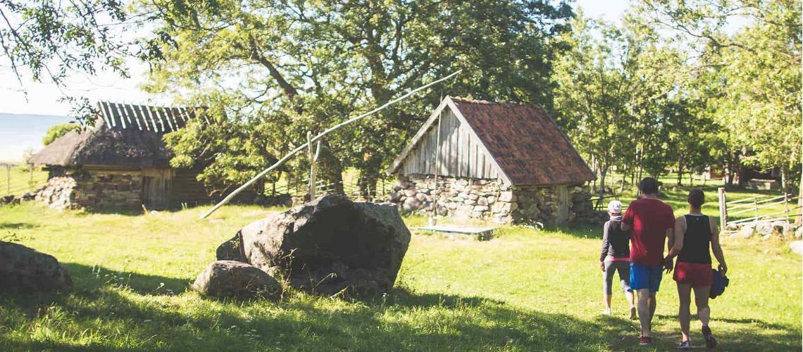 شاهد أجمل الجزر فى استونيا