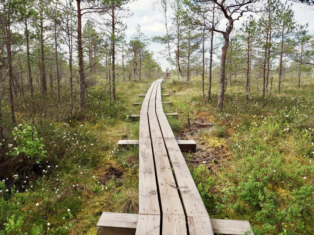 افضل الحدائق فى لاتفيا