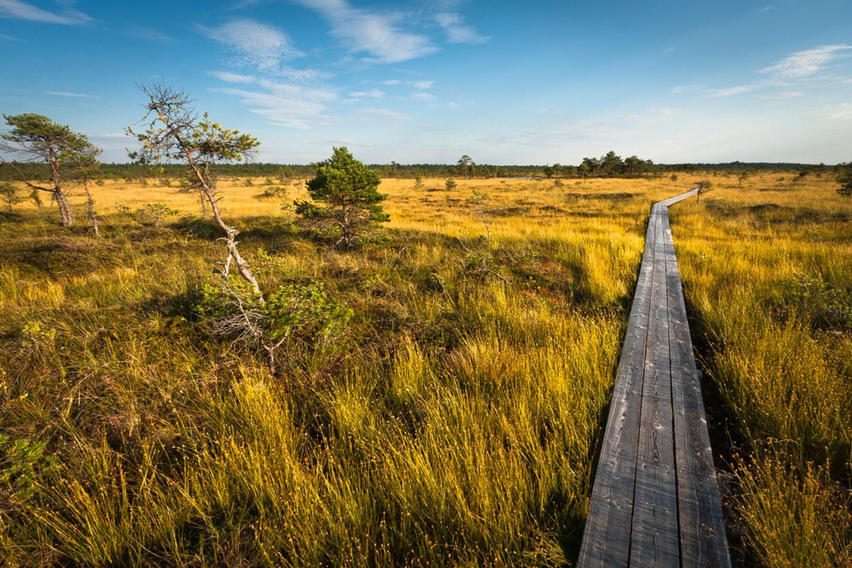 افضل الحدائق فى استونيا