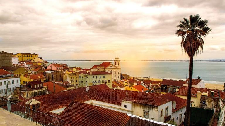 المهرجانات فى لشبونة